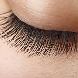 Lash extensions, lifts & tinting